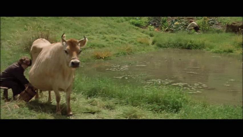 Корова=))